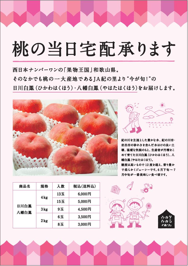 20160625-26_和歌山MMHP用2桃の宅配.png
