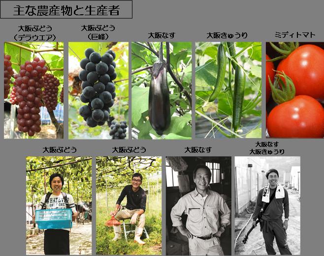 20160625_大阪南の実り(主な農産物と生産者)1ファイル化.png