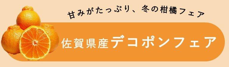 デコポンフェア_バナー.jpg