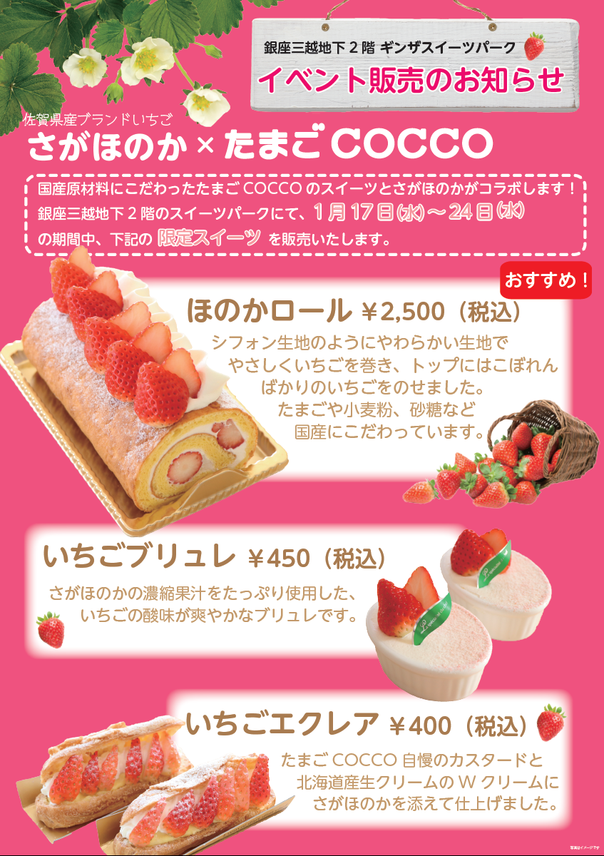 COCCO.png