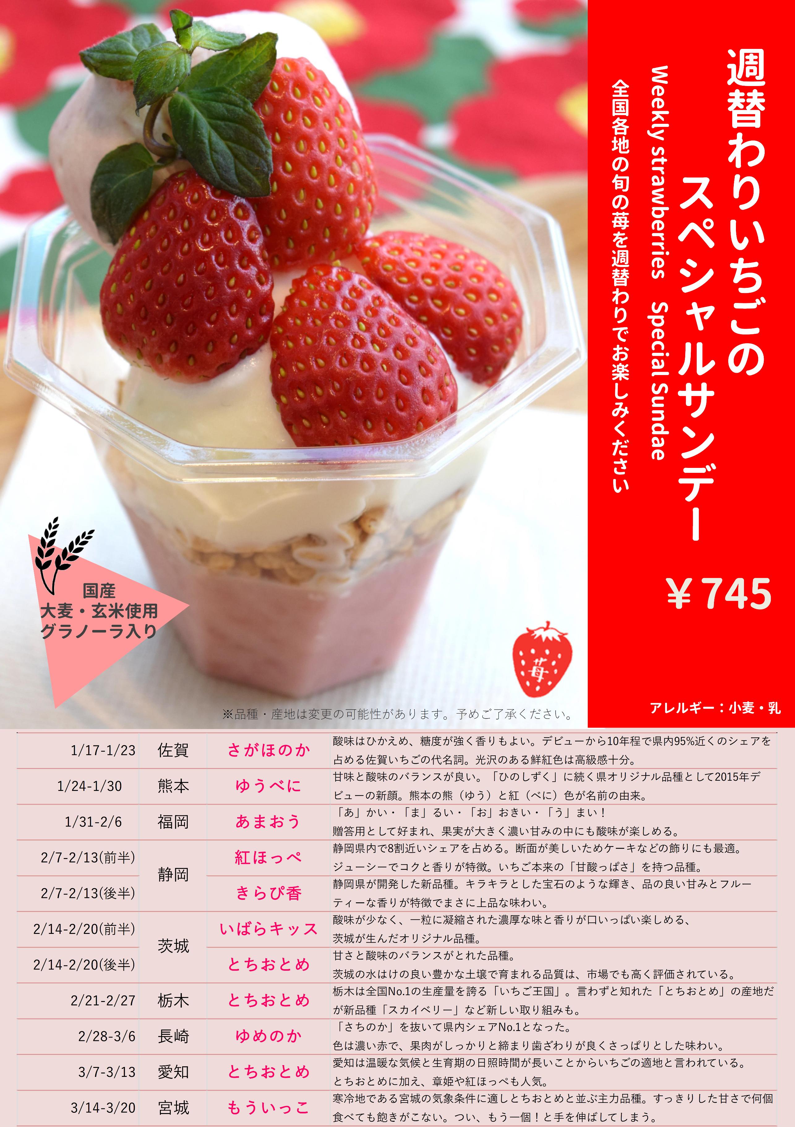 みのりカフェa1ポスター(png).png