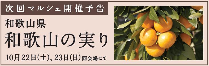 次回開催告知(20161022-23_和歌山の実り).png