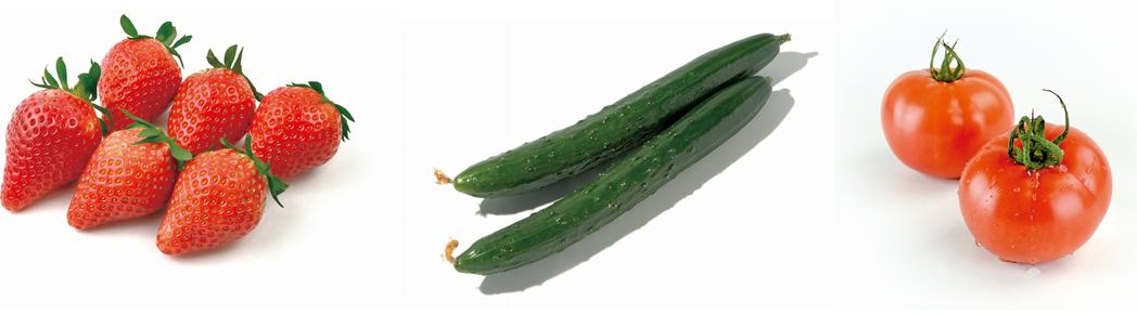 たのふじ 野菜.png