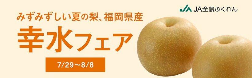 nashi_banner_pc_210726.jpg
