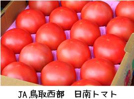 日南トマト 小.png